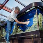 Вакансия на должность аквариумиста