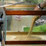 Запуск, перезапуск и чистка аквариума