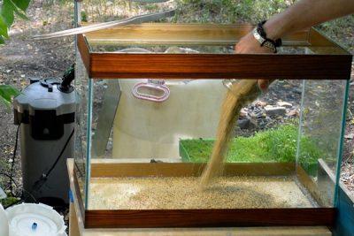 zapusk-akvariuma